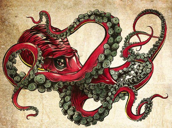 06fe08b901189246d31c47867ecf4f0c--octopus-art-octopus-drawing